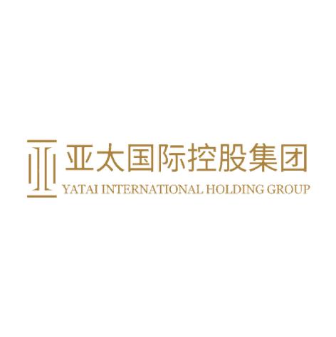亞太國際:集團財務訊息化建設