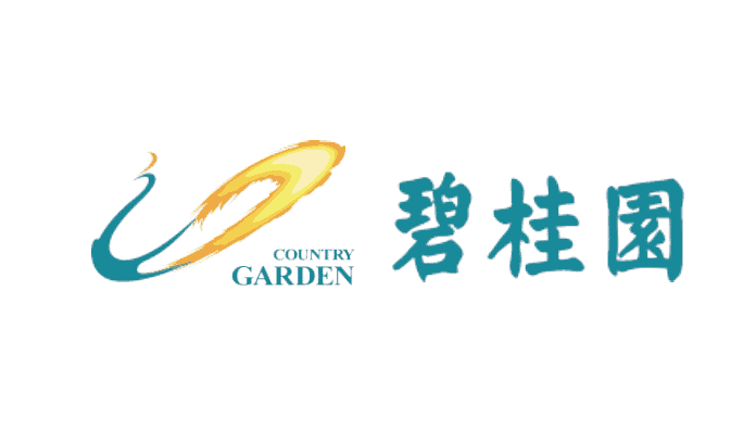 Country Garden: Financial Shared Service in Real Estate
